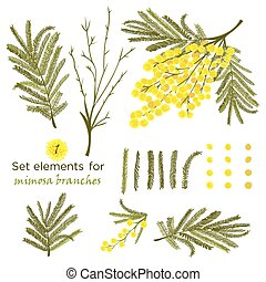 Set of hand-drawn elements for branches of mimosa