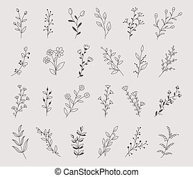 Set of hand drawn flowers, branches and leaves, vector illustration