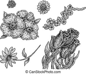 Set of hand drawn ink flowers