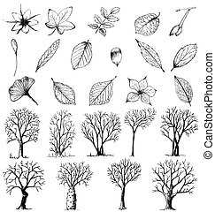 Set of hand drawn plants and trees