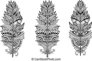 Set of hand drawn plumes. Vector illustration.