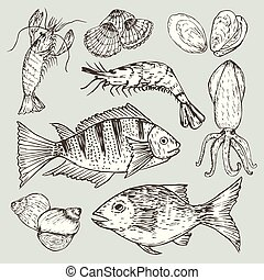 Set of hand drawn seafood, Healthy food drawings set elements for menu design. Vector illustration.