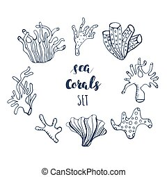 Set of hand drawn underwater coral reef elements. Vector design for your sea life illustration. Blue, pink, green, orange corals on white background.