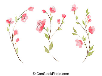 Set of hand drawn watercolor flowers. Isolated on white background
