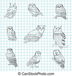 Set of hand-painted owls on a notebook sheet