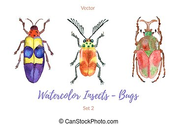 Set of hand painted watercolorbugs, vector.