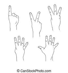 Set of hands counting one to five outer side