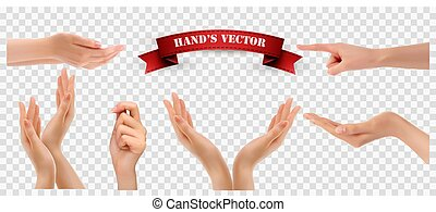 Set of hands on transparent background. Vector
