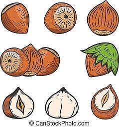 Set of hazelnuts icons isolated on white background. Design elements for logo, label, emblem, sign, poster. Vector illustration.