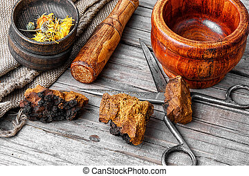 Set of healing herbs - dried pieces of chaga birch fungus...