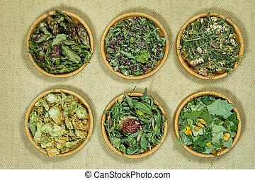 Set of healing herbs.