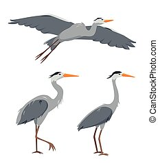 Set of heron birds in different poses isolated
