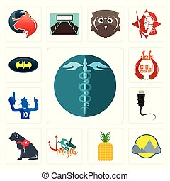 Set of hipaa, montain, pinapple, myth, service dog, ethernet, sports fan, chili cook off, bat icons