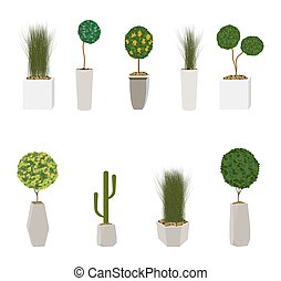 Set of Home Green Plant in Nice Pot. Vector Illustration....