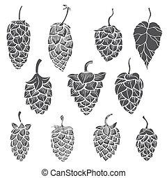 set of Hops plant