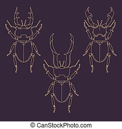 Set of horned beetles in line style. Design elements