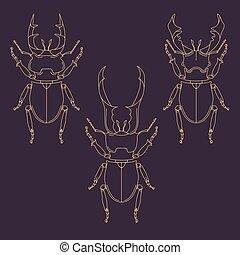 Set of horned beetles in line style. Design elements