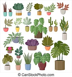 Set of house plants on a white background. Vector Illustration