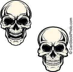 Set of human skulls isolated on white background. Design element