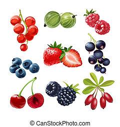 Set of icons of juicy ripe berries red and black currants, gooseberries, raspberries, strawberries, blueberries, cherries, blackberries, goji