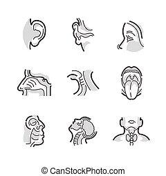 Set of Icons Medical Doctors Otolaryngology