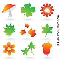 Set of icons on a wood theme. A vector illustration