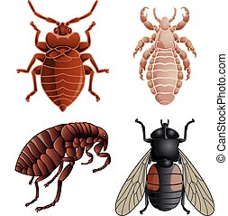 Vector image of set of icons with pests