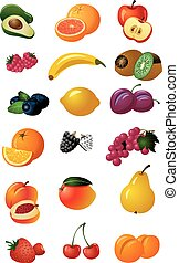 various fresh fruits - set of illustration of various fresh...