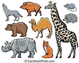 set of illustrations of mammals