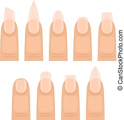 Set of images of nails. Vector illustration on white background.