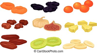 Set of images of various dried fruits. Vector illustration ...