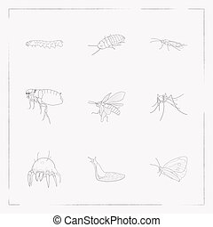 Set of insect icons line style symbols with mosquito, madagascan hissing cockroach, slug and other icons for your web mobile app logo design.