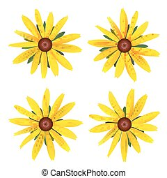Set of isolated buds yellow Daisy with leaves. Vector colorful flowers on white background. Template for for t-shirt, fashion, prints and other design
