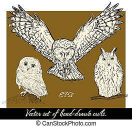 Set of isolated hand-drawn owls 1.