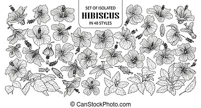 Set of isolated hibiscus in 40 styles. Cute hand drawn vector illustration flowers in white outline and black plane.
