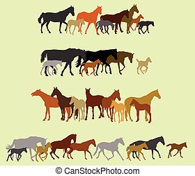 Set of isolated horses and foals silhouettes - Group of...