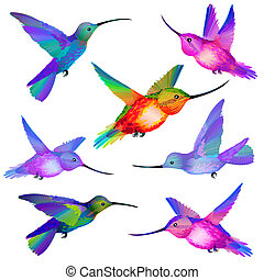 Vector Set of isolated flying Humming birds in green, violet, orange, pink and blue colors