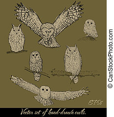 Set of isolated owls