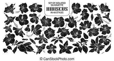 Set of isolated silhouette hibiscus in 40 styles. Cute hand drawn vector illustration flowers in white outline and black plane.