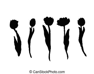 Set of isolated silhouette Tulip in 30 styles. Cute hand drawn flower vector illustration in white outline and black plane on black background.