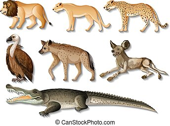 Set of isolated Wild African Animals on white background