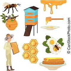 Set of items necessary for collecting honey and for its use. Pasechnik, beehive, honeycombs, bees, flowers.