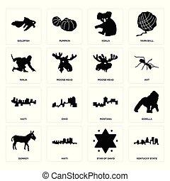 Set of kentucky state, star david, donkey, montana, haiti, moose head, ninja, koala, goldfish icons