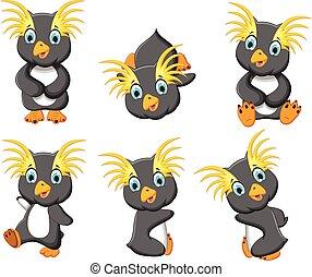 set of  king penguin cartoon posing