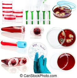 set of laboratory supplies. Petri dish, Spectrophotometer...