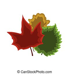 Set of leaf icon. Cartoon style. Colorful Vector Illustration