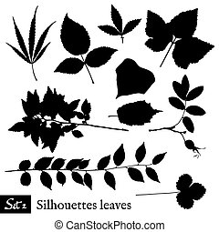 Set of Leaf Silhouettes. Isolated on white.