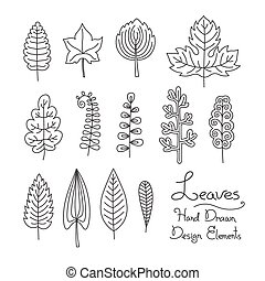 set of leaves in cartoon style