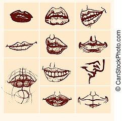Set of  lips.