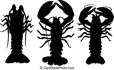 set of lobsters isolated